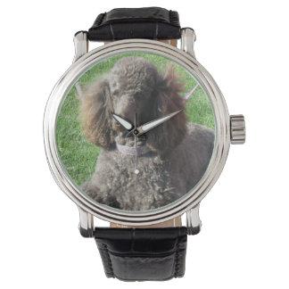 Het Horloge van de poedel
