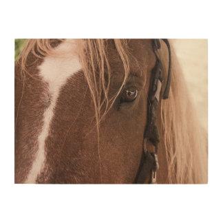 Het Houten Art. van het paard Hout Afdruk
