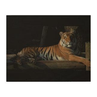 Het Houten Comité van de tijger Houten Canvas