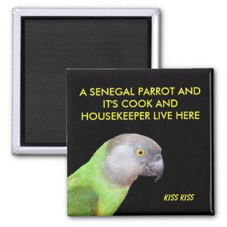Het huisdier van de Papegaai van Senegal Magneet