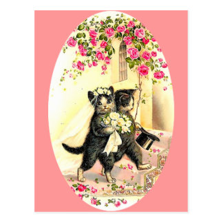 Het Huwelijk van de Kat van het kat Wenskaarten