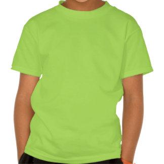 Het Ierse In dozen doen Tshirt