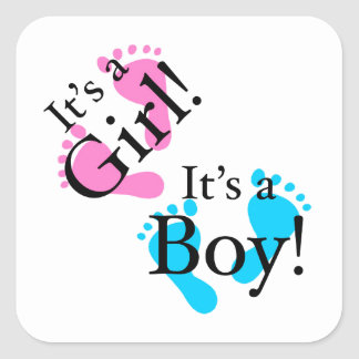 Het is een Jongen het een Meisje - Pasgeboren Baby