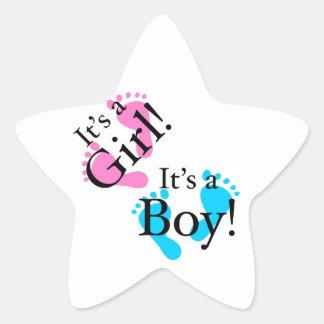 Het is een Jongen het een Meisje - Pasgeboren Baby Ster Stickers