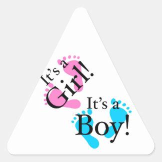 Het is een Jongen het een Meisje - Pasgeboren Baby Driehoekvormige Sticker