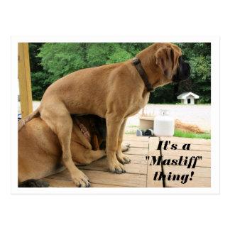 """Het is het ding van de """"Mastiff"""" van A! de gekke Briefkaart"""