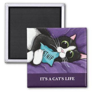 Het is het Leven | van een Kat de Magneet
