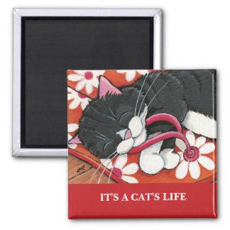 Het is het Leven | van een Kat de Vierkante Magneet
