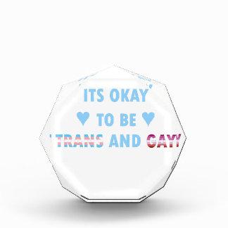 Het is O.k. om te zijn trans en Homosexueel (v3) Acryl Prijs