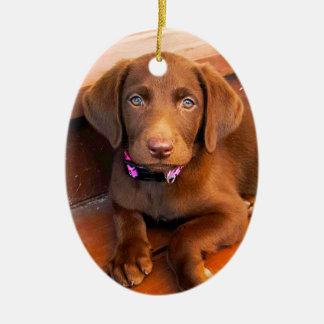 Het is Sadie! De Beste Vriend van Keramisch Ovaal Ornament