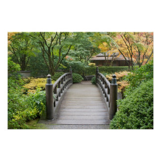 Het Japanse Poster van de Tuin
