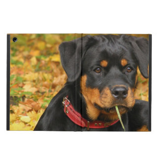 Het Jong die van Rottweiler op de grond in Bos lig iPad Air Hoesje