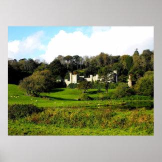 Het kasteel en de tuinen van Caerhays Poster