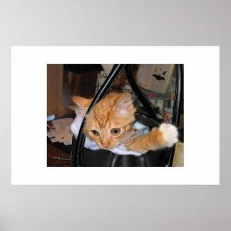 Het kat gaat winkelend poster