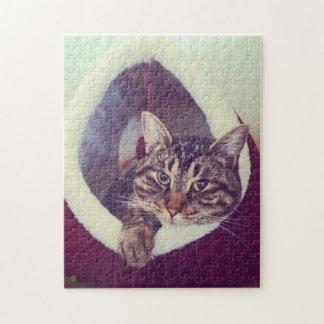 Het Kat van de gestreepte kat in de Foto van het Puzzel