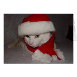 Het Kat van Kerstmis Briefkaarten 0