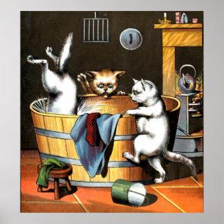 Het katje neemt een Poster van het Bad