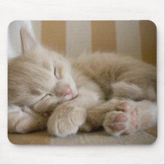 Het Katje van de slaap Muismat