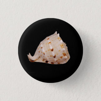 Het Kenteken van Shell van de kroonslak Ronde Button 3,2 Cm
