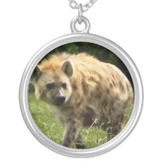 Het Ketting van de hyena
