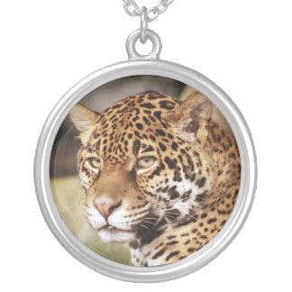 Het Ketting van Jaguar