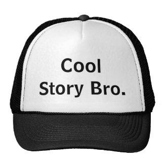 Het koele Pet van Bro van het Verhaal