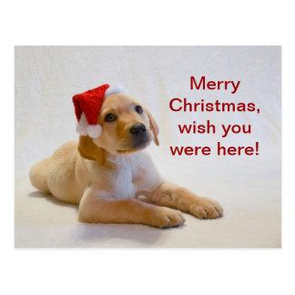 """Het """"koper"""" zegt Vrolijke Kerstmis! Briefkaart"""