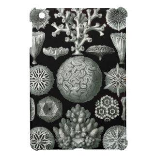 Het Koraal van Ernst Haeckel Hexacorallia iPad Mini Cases