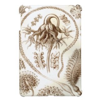 Het Koraal van Ernst Haeckel Pennatulida iPad Mini Covers