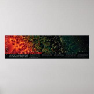 Het kosmische Web Poster