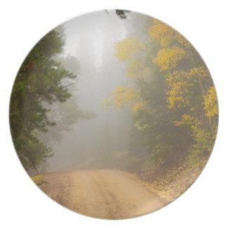 Het kruisen in de Mist van de Herfst Melamine+bord