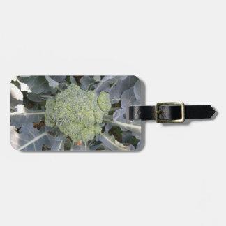 Het Label van de Bagage van de Douane van broccoli Kofferlabel