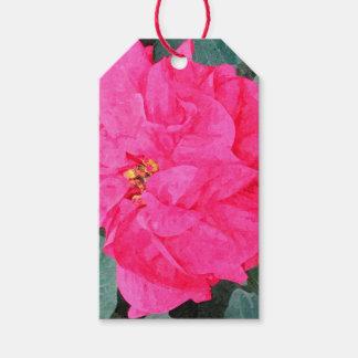 Het Label van de Gift van poinsettia Cadeaulabel