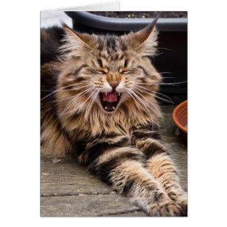 Het lachen kattenwenskaart briefkaarten 0