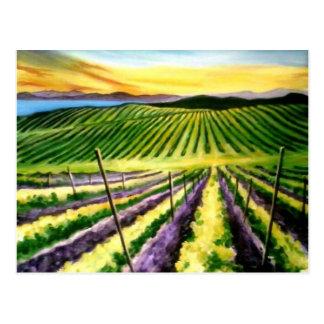 Het Land van de Wijn van het Briefkaart van pinot