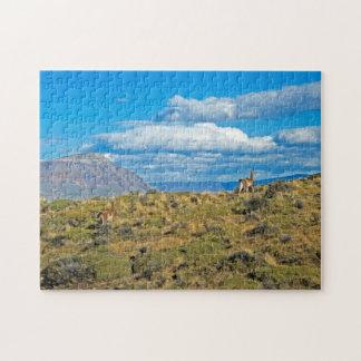 Het Land van Guanaco, Patagonië Puzzel