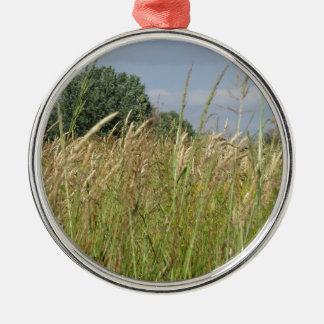 Het landschap van de zomer van wild gebied in het zilverkleurig rond ornament