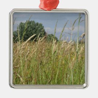 Het landschap van de zomer van wild gebied in het zilverkleurig vierkant ornament
