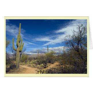 Het Landschap van Saguaro Wenskaart