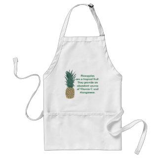 Het Leren van het Fruit van de ananas Schorten