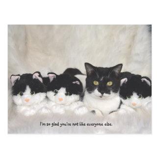 Het leuke Briefkaart van de Kat
