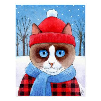 Het leuke briefkaart van de Sneeuwschoen van