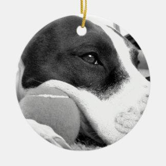 het leuke droevige kijken pitbull hond zwart wit rond keramisch ornament