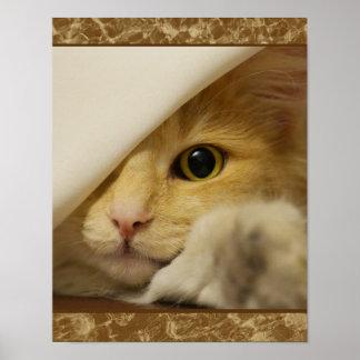 Het leuke Gele Poster van het Katje