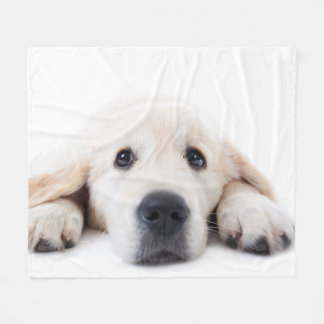 Het leuke het puppy van het golden retriever fleece deken