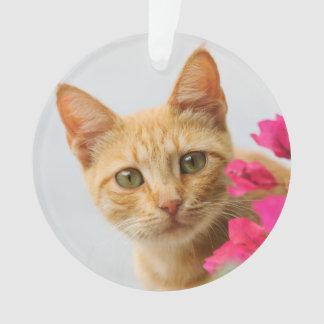 Het leuke Katje die van de Kat van de Gember op u Ornament