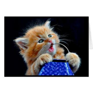 Het leuke katje kauwen briefkaarten 0