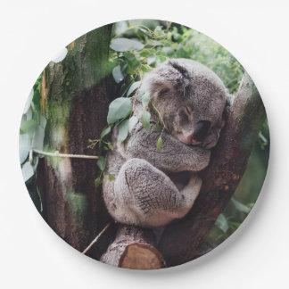 Het leuke ontspannen van de Koala in een Boom Papieren Bordje