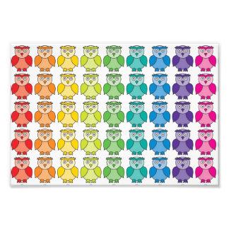 Het leuke Patroon van de Uil van de Regenboog Fotoafdruk