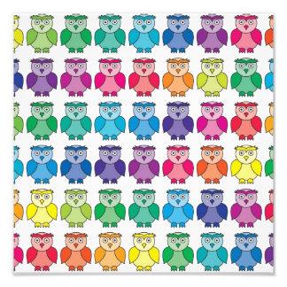Het leuke Patroon van de Uil van de Regenboog Fotoprints